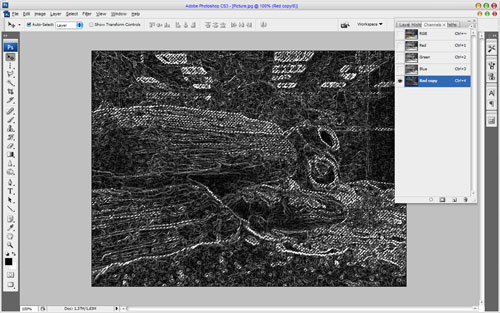 How to Sharpen Photo without Increasing Noise Visibility 04