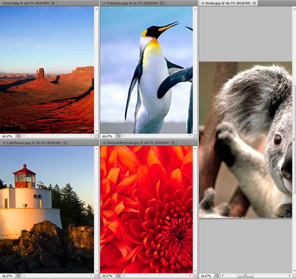 Photoshop Interface Explained 5