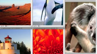 Photoshop Interface Explained (Part 1)