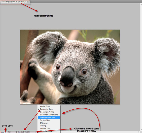 Photoshop Interface Explained 11