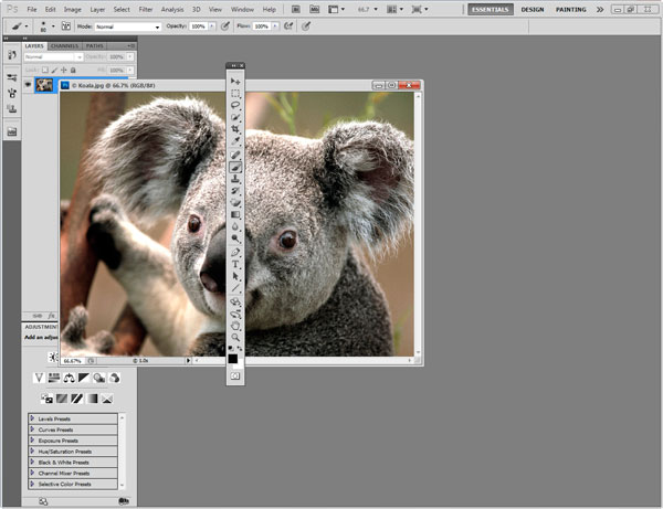 Photoshop Interface Explained 3