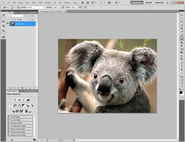 Photoshop Interface Explained 4