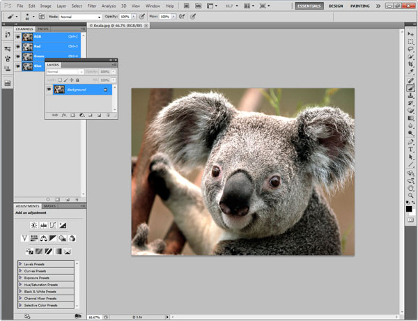 Photoshop Interface Explained 6
