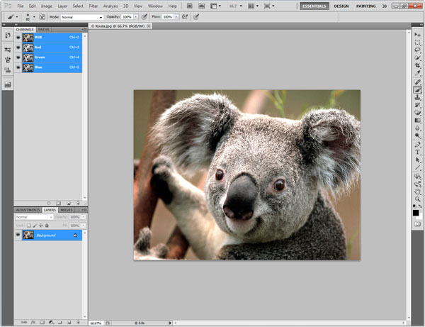 Photoshop Interface Explained 7