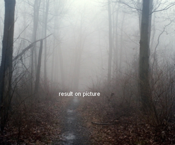 Create an Emotional Autumn Scene Photo Manipulation 5