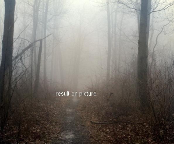 Create an Emotional Autumn Scene Photo Manipulation 8