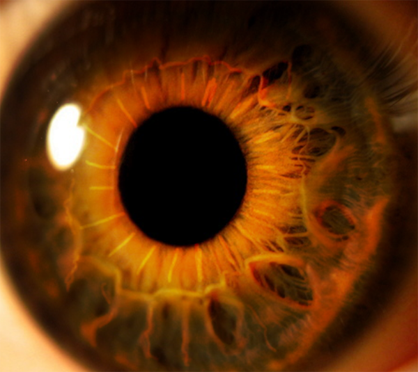 Create an Eerie Eye Photo Manipulation 4