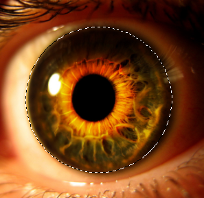 Create an Eerie Eye Photo Manipulation 8