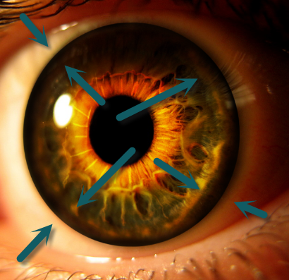 Create an Eerie Eye Photo Manipulation 9