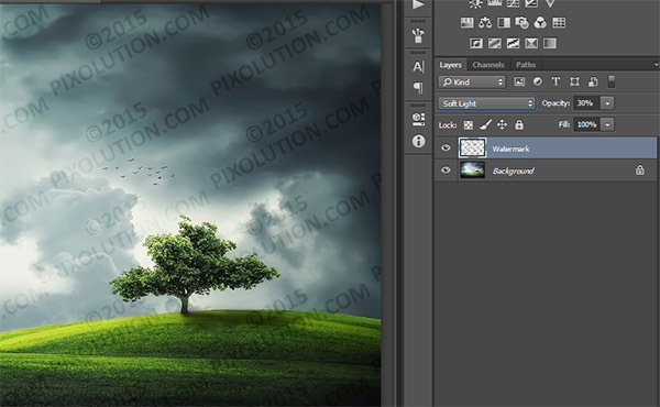 Add a Watermark Sign to any Photo in Photoshop 10