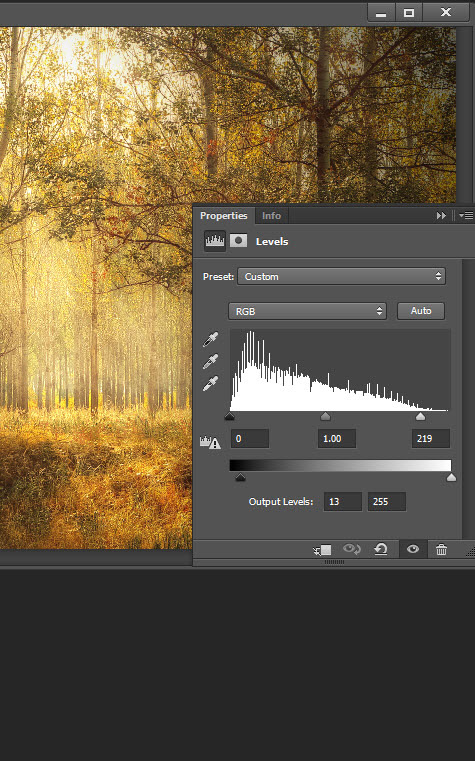 Add a warm atmosphere effect to a forest image 4