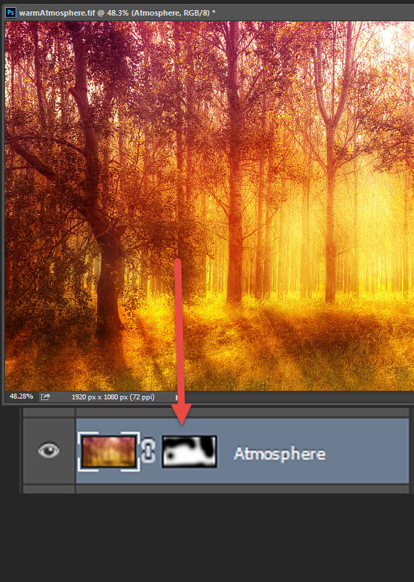 Add a warm atmosphere effect to a forest image 9