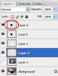 Create a Water Lily in a Cup Effect in Photoshop 21