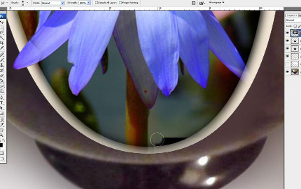Create a Water Lily in a Cup Effect in Photoshop 26