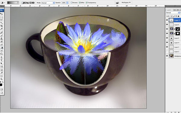 Create a Water Lily in a Cup Effect in Photoshop 33